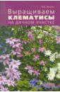 Валерия Ильина - Выращиваем клематисы на дачном участке обложка книги