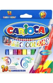 Фломастеры магические Carioca 10 цветных + 2 магических (41418)