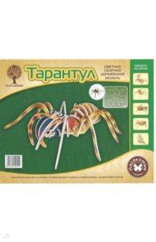 Купить Тарантул (EC017 ) ISBN: 6912802142519