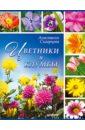 Анастасия Скворцова - Цветники и клумбы обложка книги
