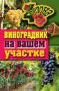 Екатерина Животовская - Виноградник на вашем участке обложка книги