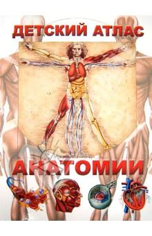 Детский атлас анатомии - Винченцо Гуиди изображение обложки