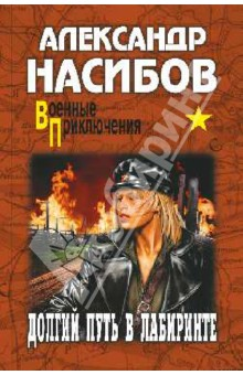 Долгий путь в лабиринте - Александр Насибов