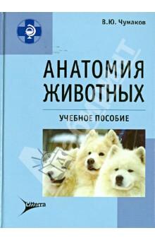 Анатомия животных: учебное пособие - В. Чумаков