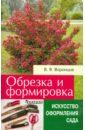 Валентин Воронцов - Обрезка и формировка кустарников обложка книги
