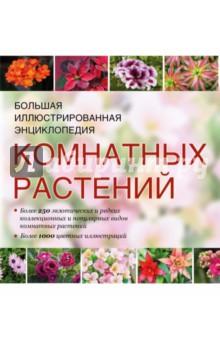 Большая иллюстрированная энциклопедия комнатных растений - Гапон, Горбатовский, Головкин