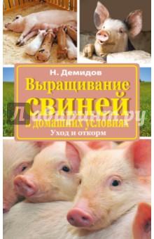 Как разводить свиней в домашних условиях для начинающих