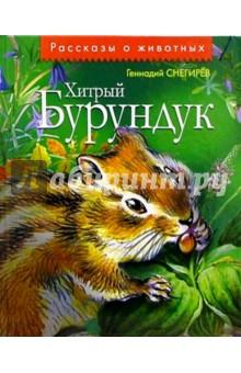 Хитрый Бурундук: Рассказы и маленькие повести - Геннадий Снегирев