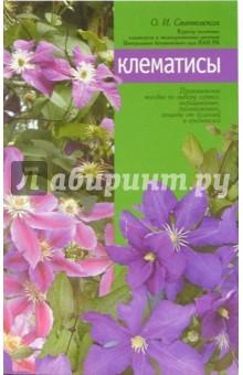 Клематисы - Ольга Свитковская