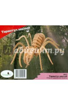 Купить Тарантул малый. Сборная деревянная модель (E017 )