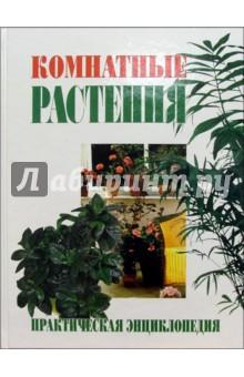 Комнатные растения. Практическая энциклопедия - Анатолий Степура