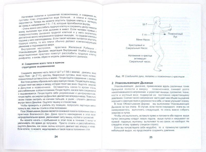 Иллюстрация 1 из 9 для Цигун Железная Рубашка I. Укоренение Космической Внутренней Энергии - Мантэк Чиа | Лабиринт - книги. Источник: Лабиринт