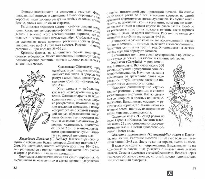 Иллюстрация 1 из 4 для Многолетние цветы для вашего сада - Наталья Лунина | Лабиринт - книги. Источник: Лабиринт