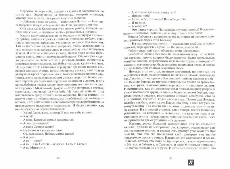 Иллюстрация 1 из 27 для Памятная медаль. Повести и рассказы - Евгений Носов | Лабиринт - книги. Источник: Лабиринт