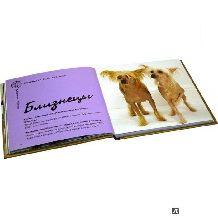 Иллюстрация 9 из 15 для Собачья астрология. Что говорят звёзды о характере вашего четвероногого друга - Гринолл, Джейвор | Лабиринт - книги. Источник: Лабиринт