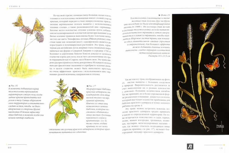 Иллюстрация 1 из 41 для Бабочки. Практическое руководство - Хелен Стивенс | Лабиринт - книги. Источник: Лабиринт