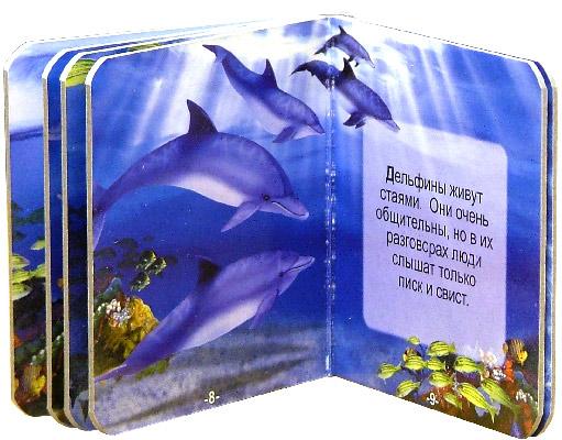 Иллюстрация 1 из 19 для Животные. Чудо-коробочка | Лабиринт - книги. Источник: Лабиринт
