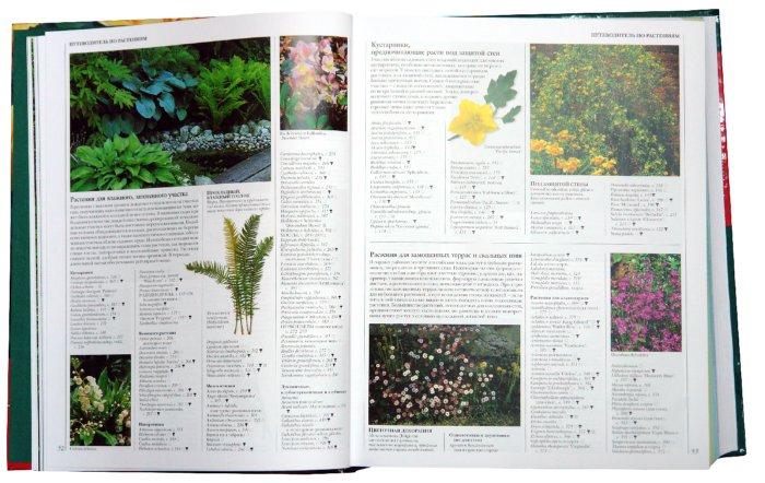 Иллюстрация 1 из 2 для Ваш цветущий сад: Энциклопедия садовых деревьев, кустарников и цветов | Лабиринт - книги. Источник: Лабиринт