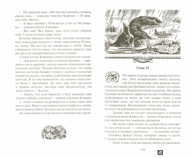 Иллюстрация 1 из 22 для Рассвет - Эрин Хантер | Лабиринт - книги. Источник: Лабиринт