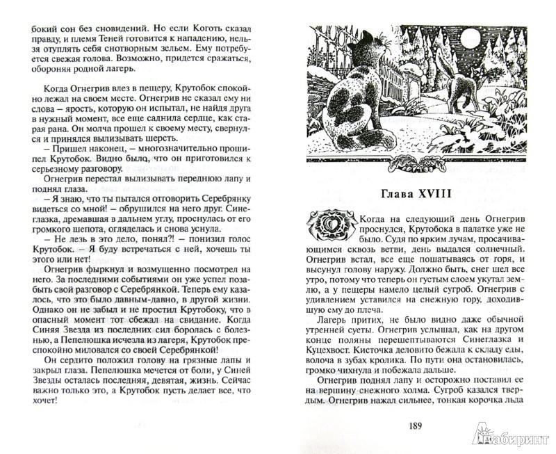 Иллюстрация 1 из 19 для Огонь и лед - Эрин Хантер | Лабиринт - книги. Источник: Лабиринт