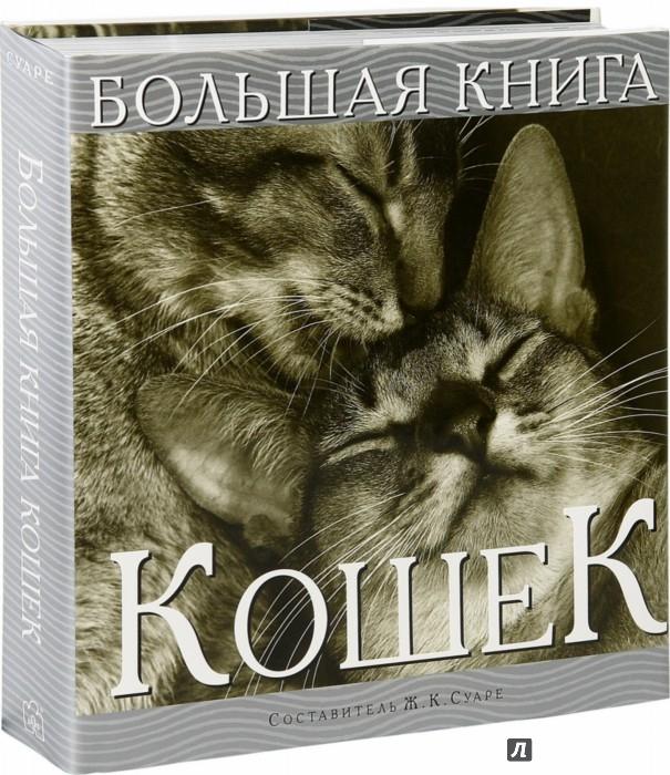 Иллюстрация 1 из 12 для Большая книга кошек - Жан Суаре | Лабиринт - книги. Источник: Лабиринт