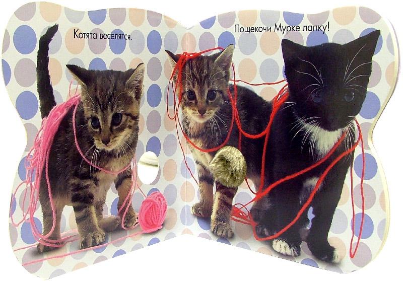 Иллюстрация 1 из 11 для Про котят. Погладь меня! (с блестками) | Лабиринт - книги. Источник: Лабиринт