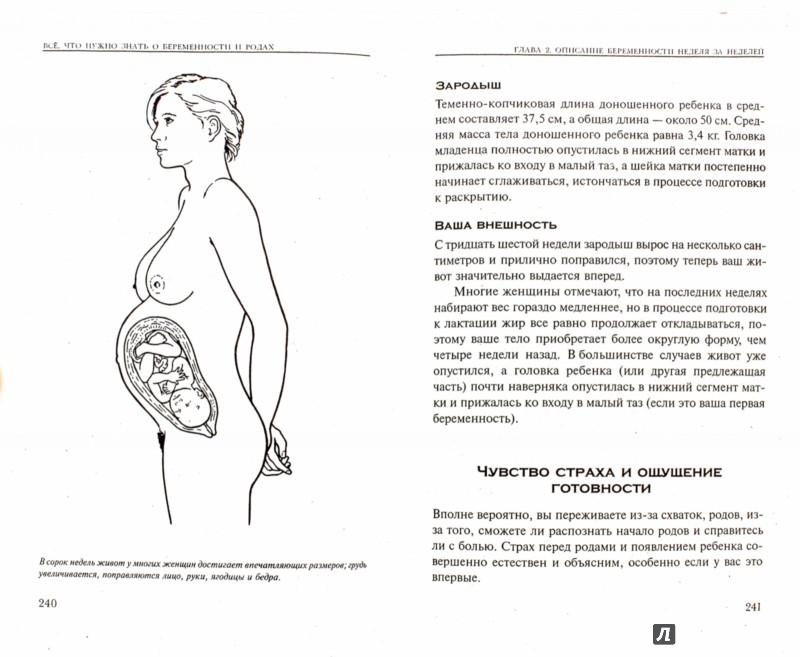 Иллюстрация 1 из 21 для Все, что нужно знать о беременности и родах - Адриана Хантер | Лабиринт - книги. Источник: Лабиринт