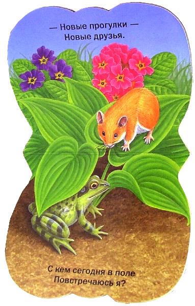 Иллюстрация 1 из 3 для Пушистые мордочки. Прогулки хомячка | Лабиринт - книги. Источник: Лабиринт