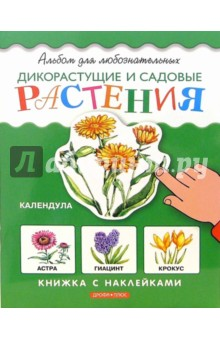 Дикорастущие и садовые растения. Книжка с наклейками