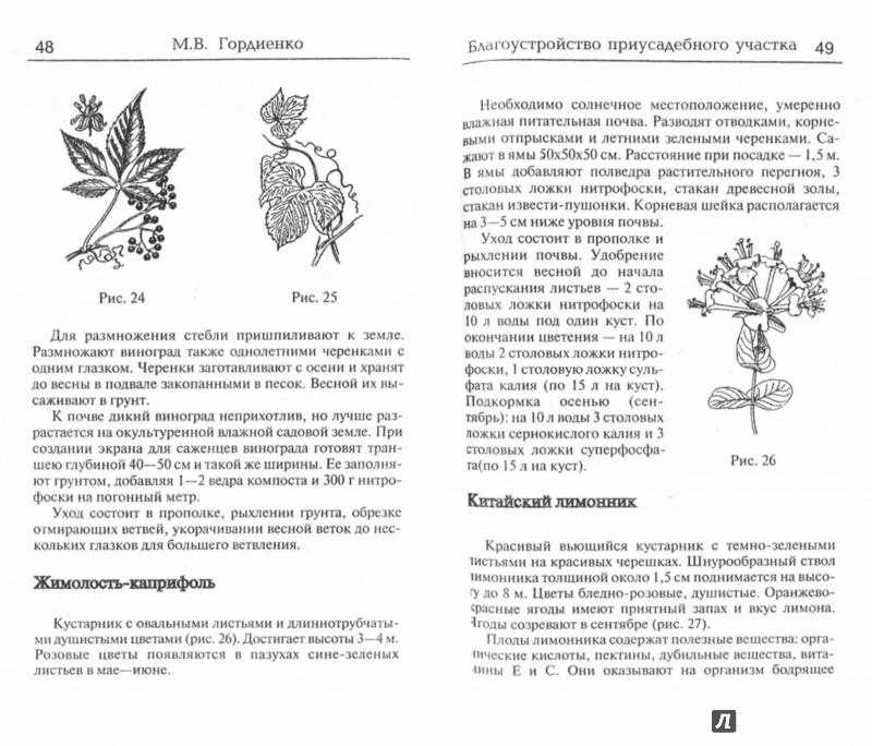 Иллюстрация 1 из 5 для Благоустройство приусадебного участка - Михаил Гордиенко | Лабиринт - книги. Источник: Лабиринт
