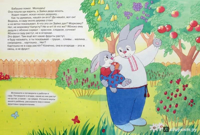 Иллюстрация 1 из 8 для Зайка на даче. Развитие речи - Фролова, Савушкин | Лабиринт - книги. Источник: Лабиринт