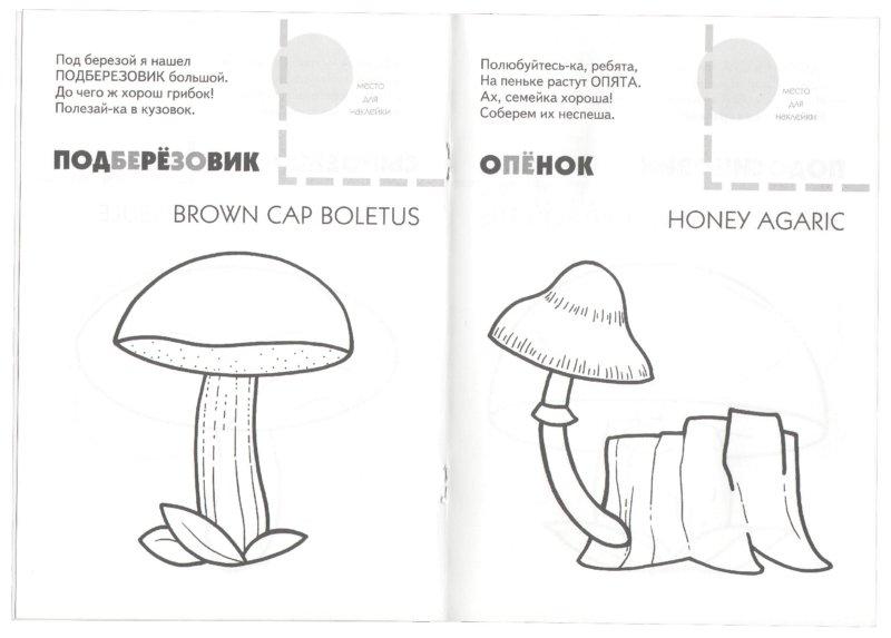 Иллюстрация 1 из 7 для Назови, раскрась, наклей: Грибы - Наталья Мигунова | Лабиринт - книги. Источник: Лабиринт
