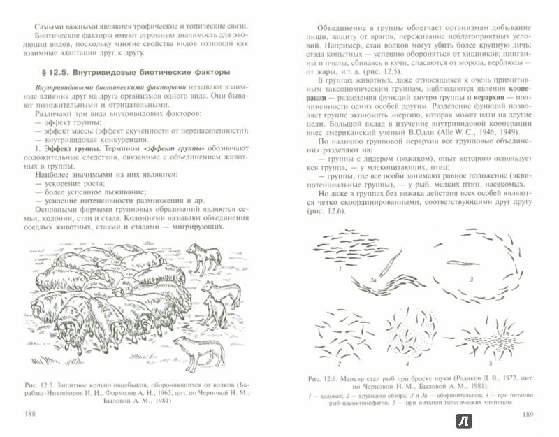 Иллюстрация 1 из 16 для Основы экологии - Чебышев, Филиппова | Лабиринт - книги. Источник: Лабиринт