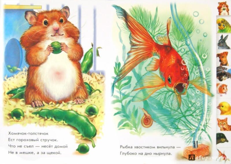 Иллюстрация 1 из 19 для В доме - Олеся Квитка | Лабиринт - книги. Источник: Лабиринт