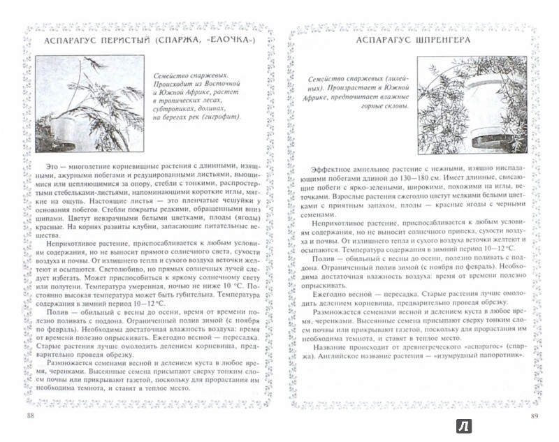 Иллюстрация 1 из 10 для Уроки экологии в начальной школе - Руднянская, Черезова | Лабиринт - книги. Источник: Лабиринт