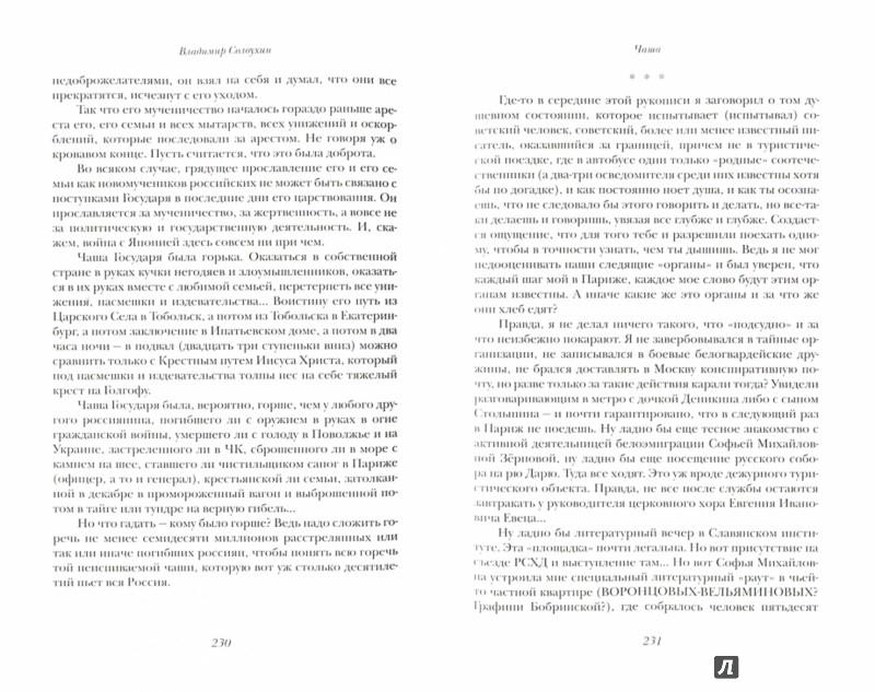 Иллюстрация 1 из 35 для Чаша: роман-эссе, документальная повесть, рассказы, эссе. Том четвертый - Владимир Солоухин | Лабиринт - книги. Источник: Лабиринт