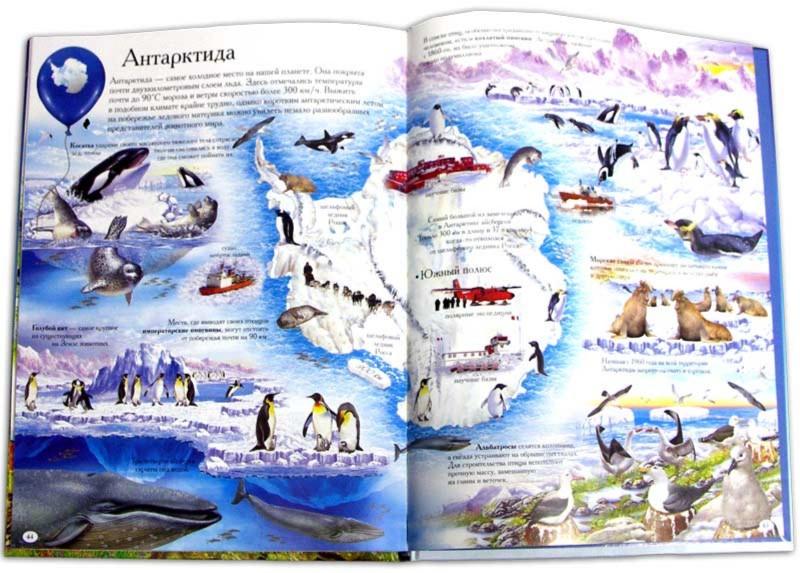 Иллюстрация 1 из 23 для 1000 животных с наклейками | Лабиринт - книги. Источник: Лабиринт