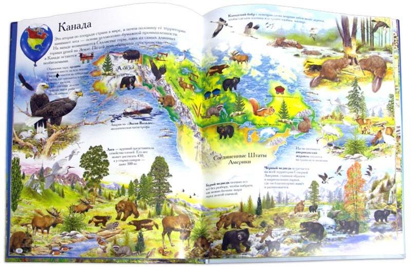 Иллюстрация 1 из 17 для Детский атлас мира. Обитатели Земли - Анна Добладо | Лабиринт - книги. Источник: Лабиринт