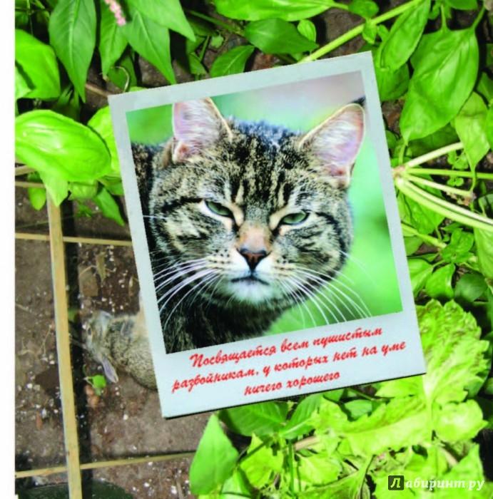 Иллюстрация 1 из 15 для Кошки-разбойники - Дебби Келлер | Лабиринт - книги. Источник: Лабиринт
