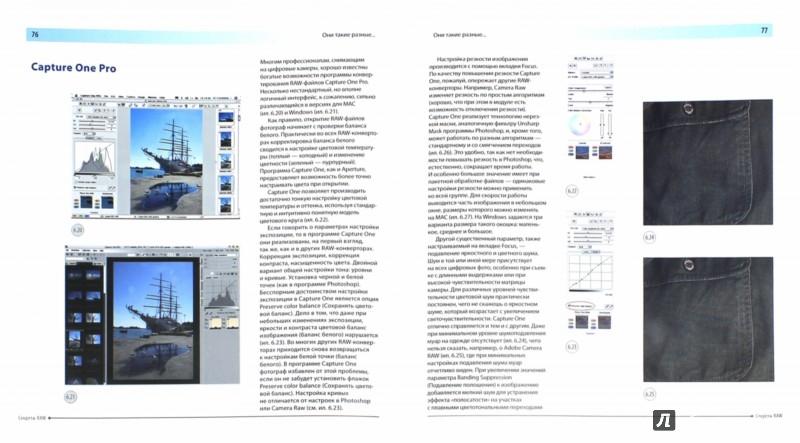 Иллюстрация 1 из 26 для Секреты RAW. Профессиональная обработка - Александр Ефремов | Лабиринт - книги. Источник: Лабиринт