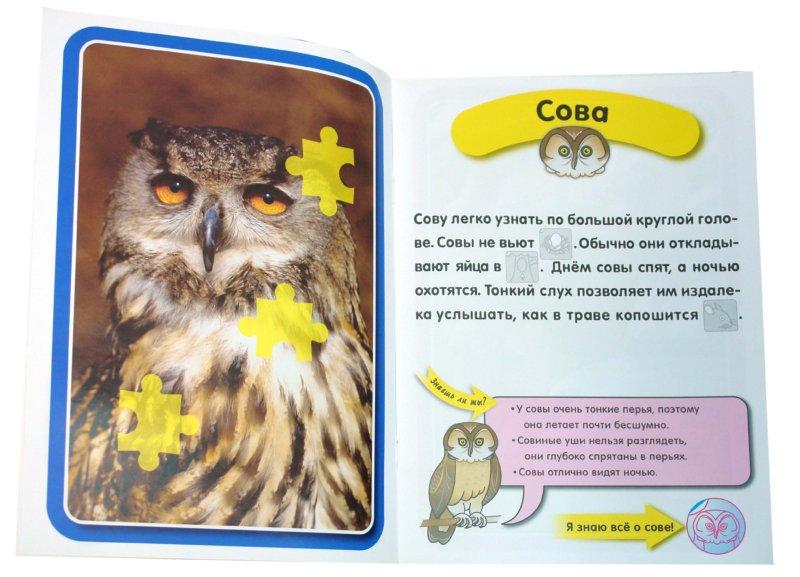 Иллюстрация 1 из 32 для Я знаю все о птицах | Лабиринт - книги. Источник: Лабиринт