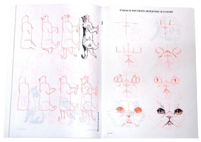 Иллюстрация 1 из 24 для Рисуем 50 кошек - Ли Эймис | Лабиринт - книги. Источник: Лабиринт