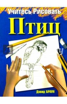 Учитесь рисовать птиц