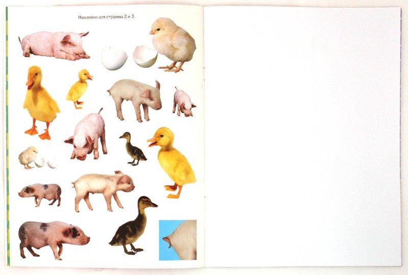 Иллюстрация 1 из 17 для Узнай и наклей. Пушистые малыши | Лабиринт - книги. Источник: Лабиринт