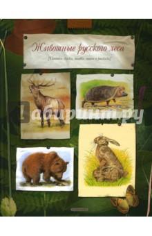 Животные русского леса