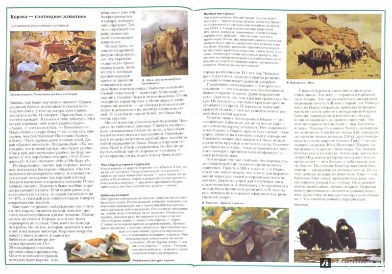Иллюстрация 1 из 32 для Загадки и тайны домашних животных - Светлана Лаврова   Лабиринт - книги. Источник: Лабиринт