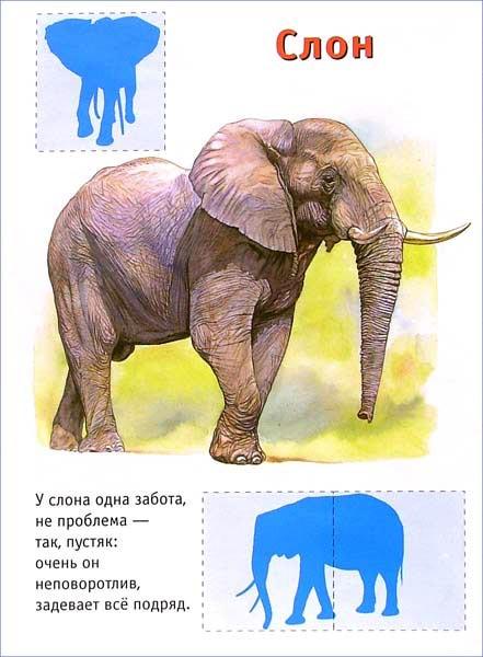 Иллюстрация 1 из 2 для Ребятам о зверятах. Щенки (синяя) | Лабиринт - книги. Источник: Лабиринт