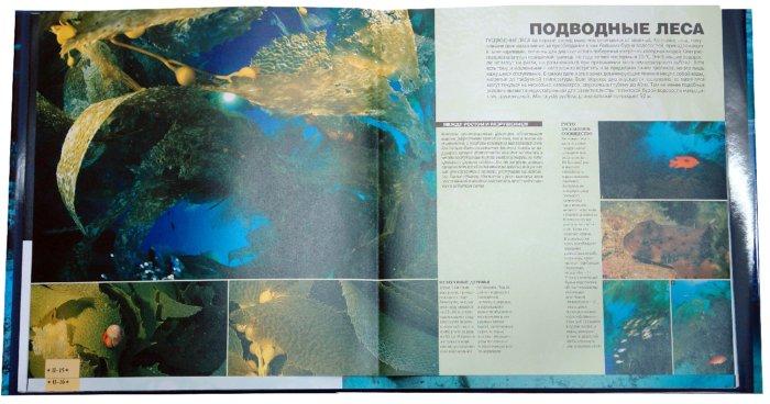 Иллюстрация 1 из 5 для Большой атлас морей и океанов - Анжело Можетта | Лабиринт - книги. Источник: Лабиринт