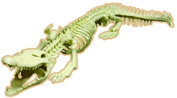 Иллюстрация 1 из 3 для Скелет крокодила (28202) | Лабиринт - игрушки. Источник: Лабиринт