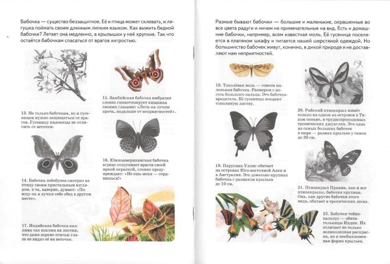 Иллюстрация 1 из 7 для Бабочки - А. Бугаев | Лабиринт - книги. Источник: Лабиринт
